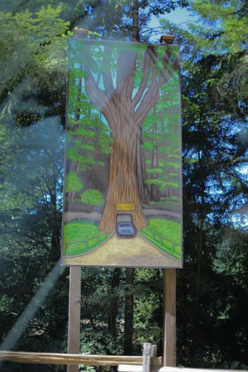 11_big_tree