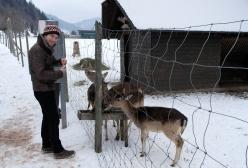 Matt feeding deer