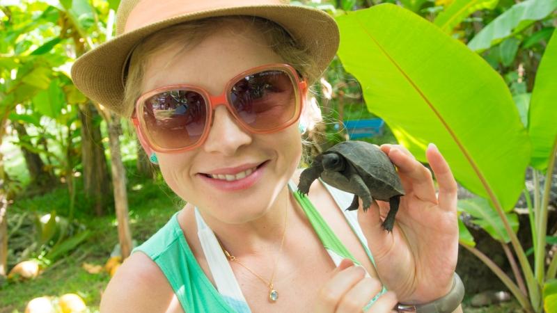 Baby Tortoise - La Digue