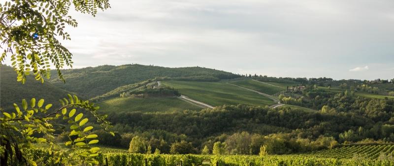breathtaking views from Poggio Asciutto